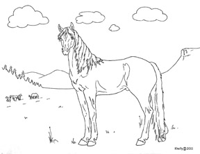Mustang Coloring Poster